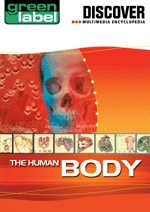 Discover The Human Body box